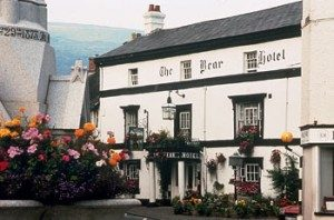 Bear Hotel, The