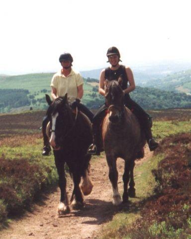 Ellesmere Riding Centre