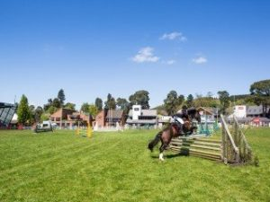 Royal Welsh Spring Festival @ Royal Welsh Showground