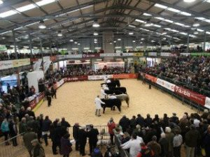 Royal Welsh Winter Fair @ Royal Welsh Showground